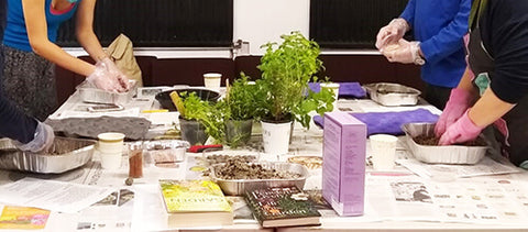 Gardening as occupational therapy workshop