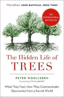 The Hidden Life of Trees book review