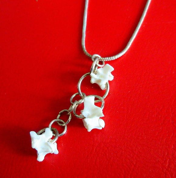 Snake Vertebrae Necklace 1 - Katy Stenberg-Baine