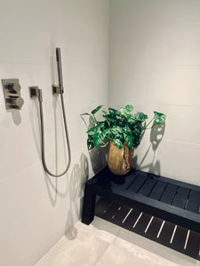 LAYER Sheridan Swiss Cheese Monstera Plant in bathroom