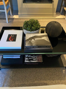 LAYER FULTON JADE SUCCULENT STYLED ON COFFEE TABLE