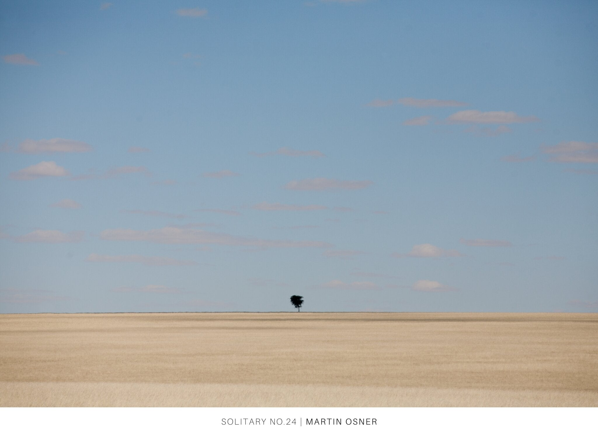 Solitary by Martin Osner