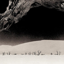 Deadvlei No.1