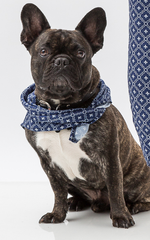 Oscar & Ethel | Dudley Blue And White Scarf