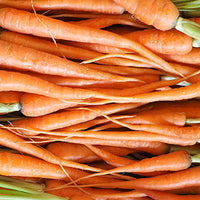 Carrot Featured Ingredient - L'Occitane