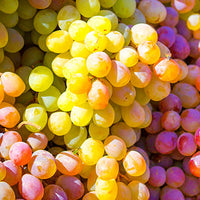 Grape_Seed Featured Ingredient - L'Occitane