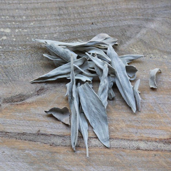 White Sage Leaves