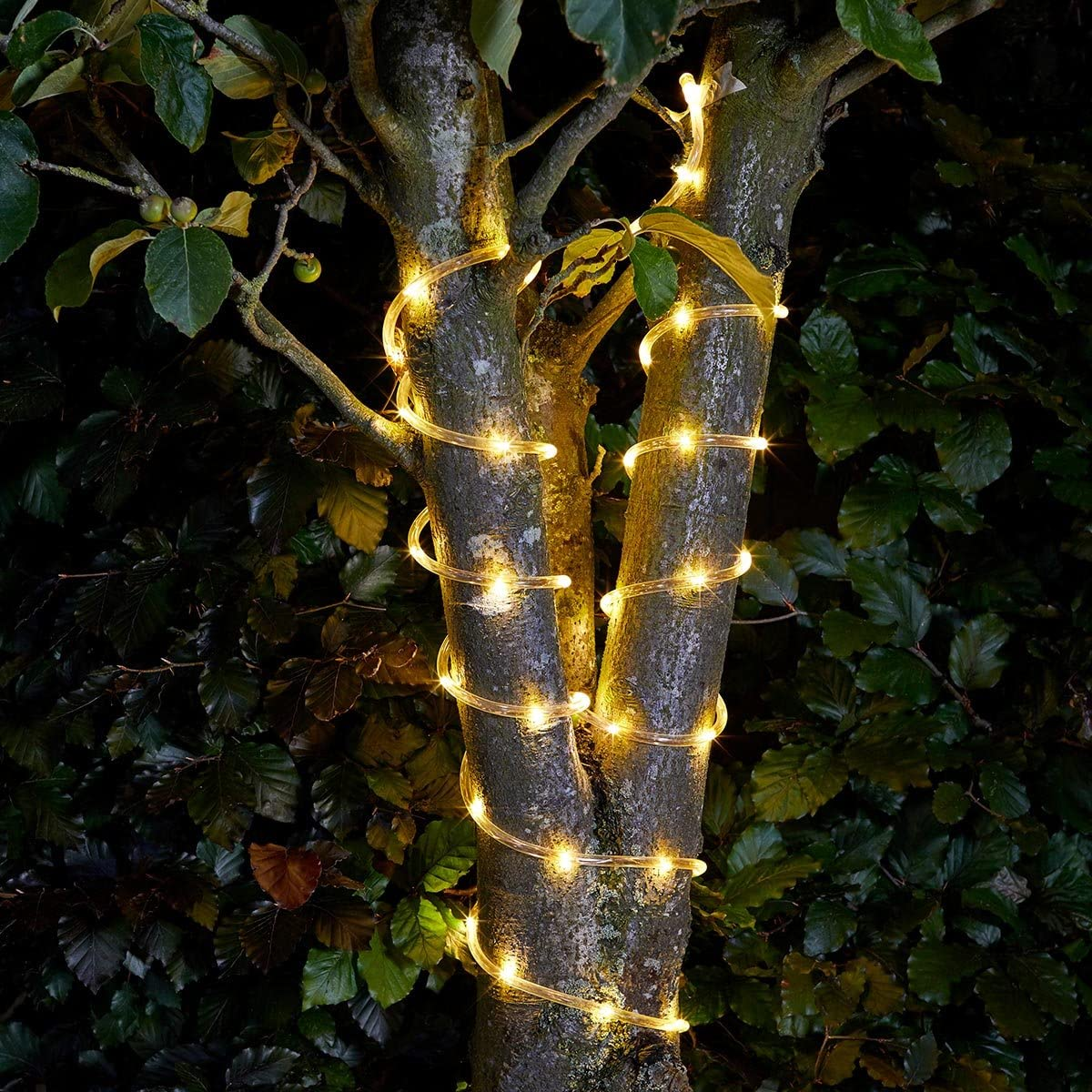 Solar Powered 100 LED Rope Light