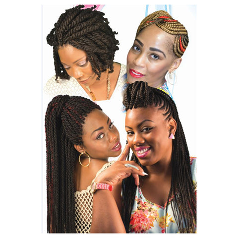 POSTER 119 24x36in 4in1-BRAIDS & TWISTS