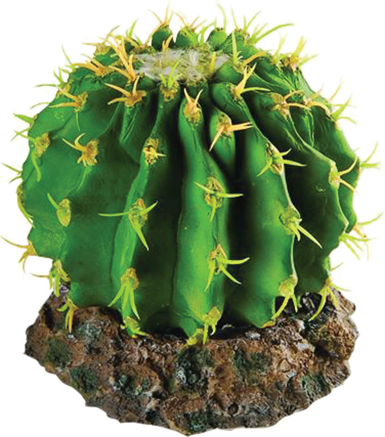 RS Cactus with Rock Base 10 x 10 x 8cm Default Title