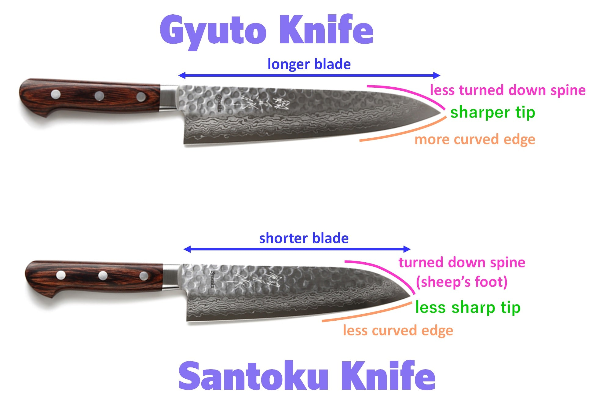 Shape of Gyuto and Santoku