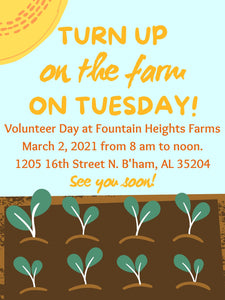 Tuesday, March 2 Volunteer day
