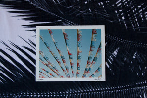 "Analogue Convergence - 8"" x 10"" La Brea Print - Aloha Beach Club"