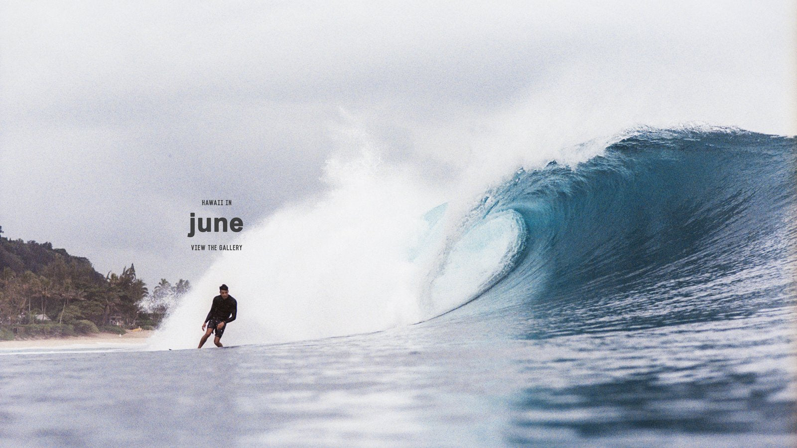 Hawaii in June