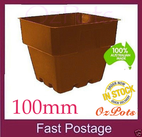 100mm Square Punnet Pot - Terracotta colour
