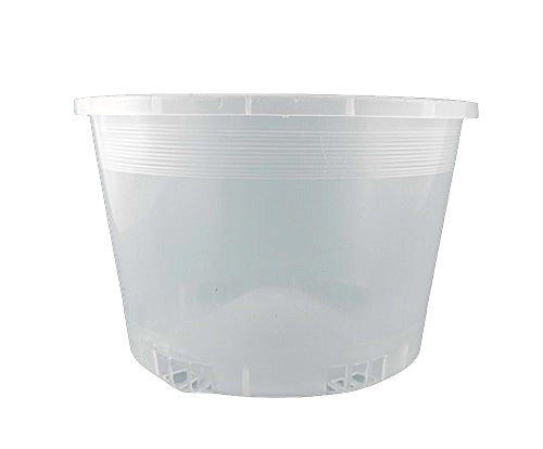 150mm Clear Round Squat Pots Pots  -  Phalaenopsis / Orchid, Propagation