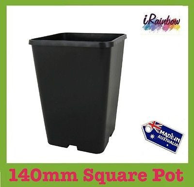 140mm Square Garden / Plant Pot - Great for Cirtus / Rose - Ozpots