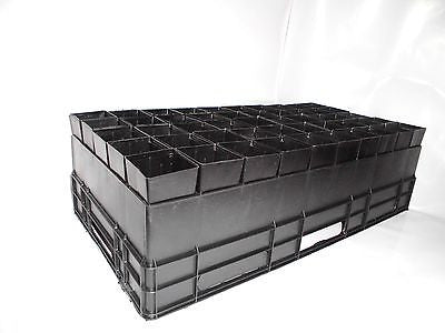 Plastic Forestry Plant Tube Pot Square 50mm x 50pcs with Air Pruning High Tray - AusPots Permaculture
