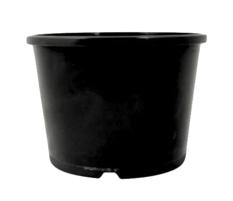 200mm Round Squat Pot