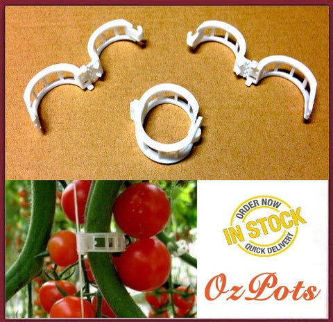 22mm Tomato Garden Plant Clips / Fasteners - Muti-Purpose - White