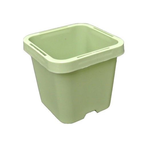 63mm Square Squat Pot - Green