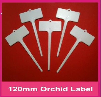 Plastic Orchid Label - 120mm - Great for Garden / Plant Labelling /Propagation - AusPots Permaculture