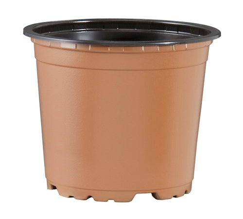 100mm TEKU Squat Pot - Terracotta VCG