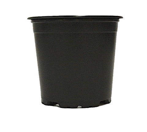 100mm TEKU Pot - Black VCH