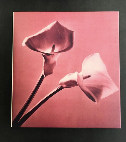 ROBERT MAPPLETHORPE / Pistils - tailor books