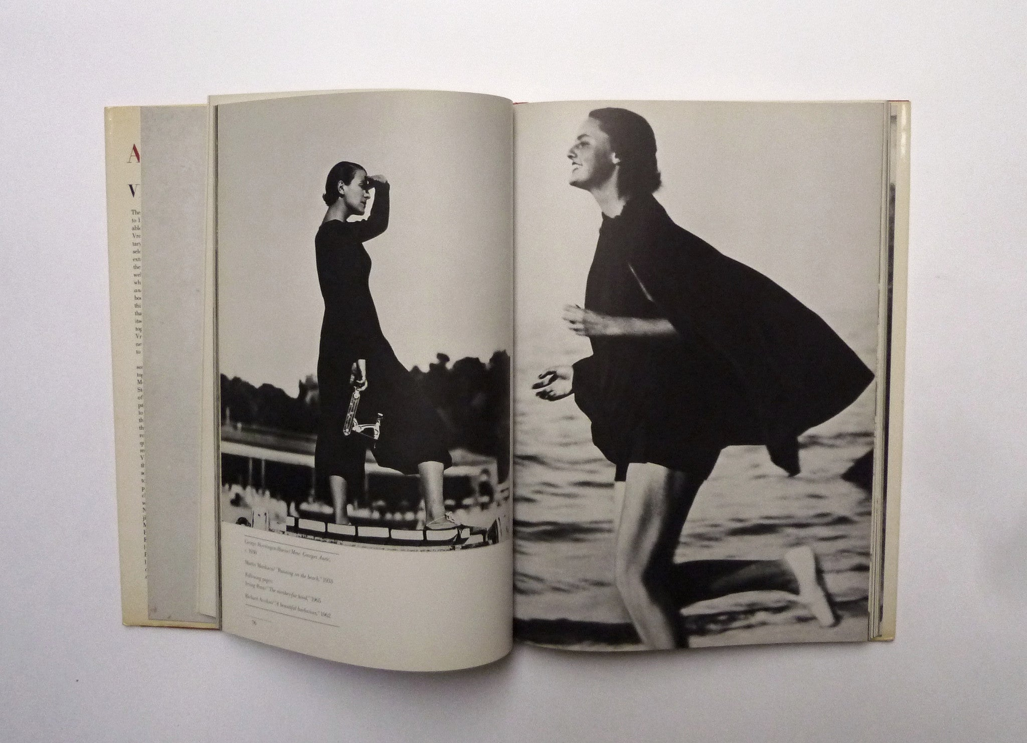 DIANA VREELAND / Allure - tailor books