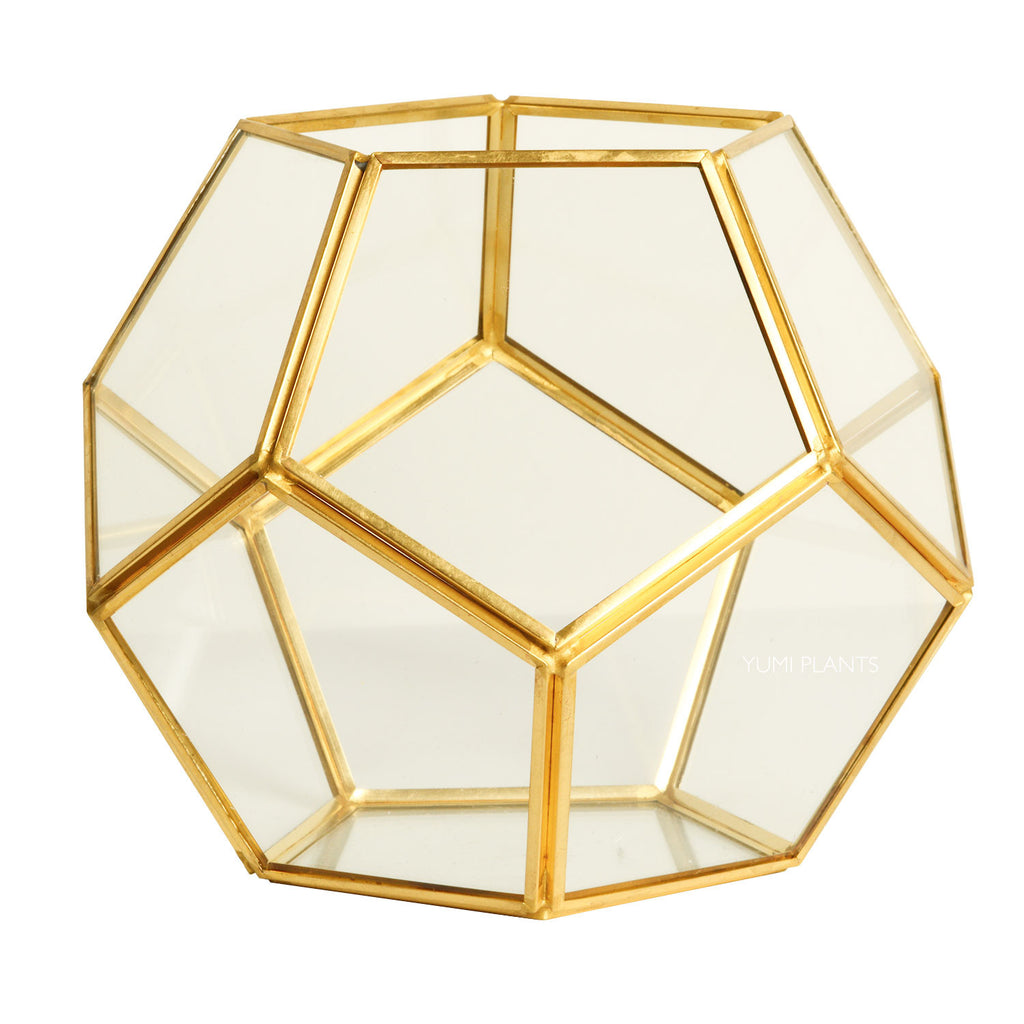 Geometric Gold Glass Terrarium