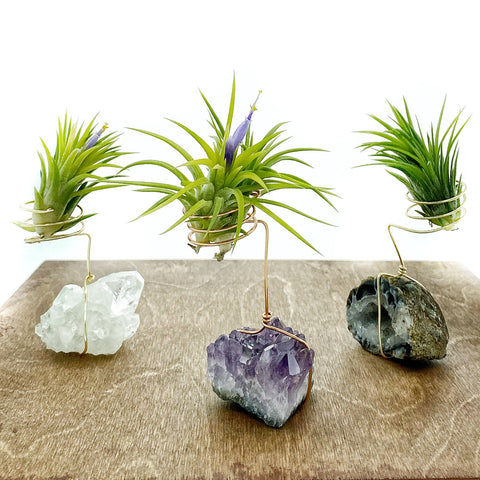 Geode Crystal Plant Holder + Plant