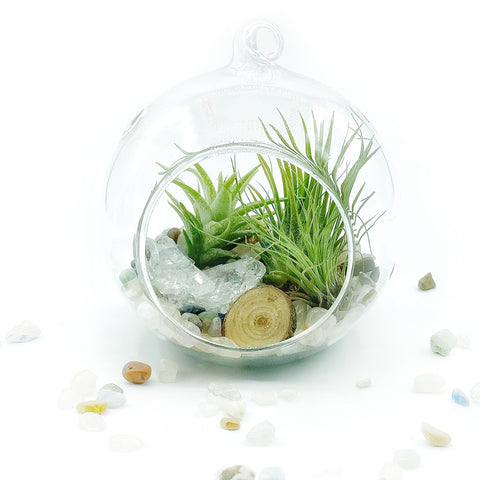 DIY Gemstone Terrarium