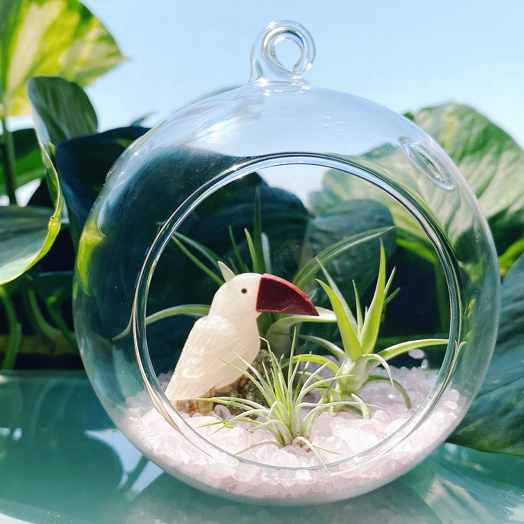 Cockatoo Bird Rose Quartz Terrarium