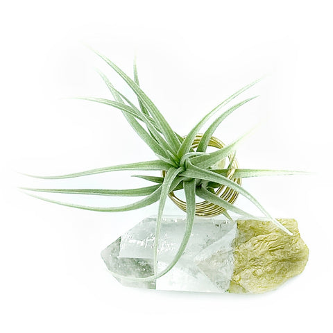 Quartz Crystal Air Plant Holder
