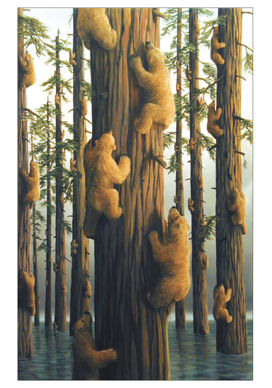 Bears Boxed Notecard Set by Robert Bissell