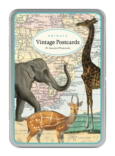Animals Vintage Postcards by Cavallini & Co.