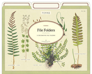 If you enjoy Cavallini's other floral themed file folders such as Succulents, Wildflowers, or Botany, then their new Fern File Folder set is for you.