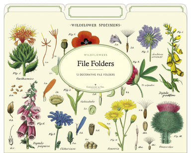 Wildflowers are a hit this year. Cavallini's vintage floral images adorn these Dandelion File Folders.