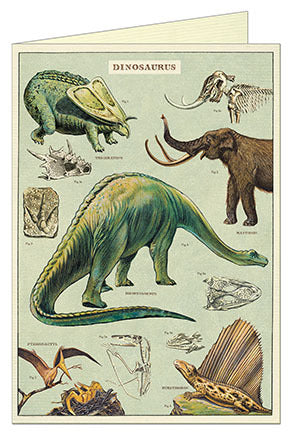 Cavallini & Co. Dinosaurs Blank Single Greeting Card
