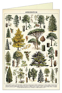 Cavallini & Co. Arboretum Single Greeting Card