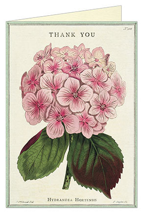 Cavallini & Co. Hydrangea Blank Single Thank You Card