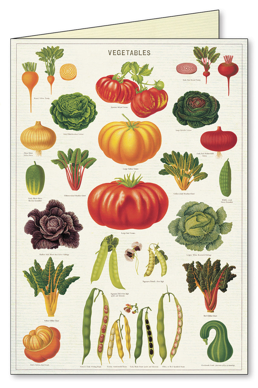 Garden vegetables vintage imagery adorn the Vegetables notecard.