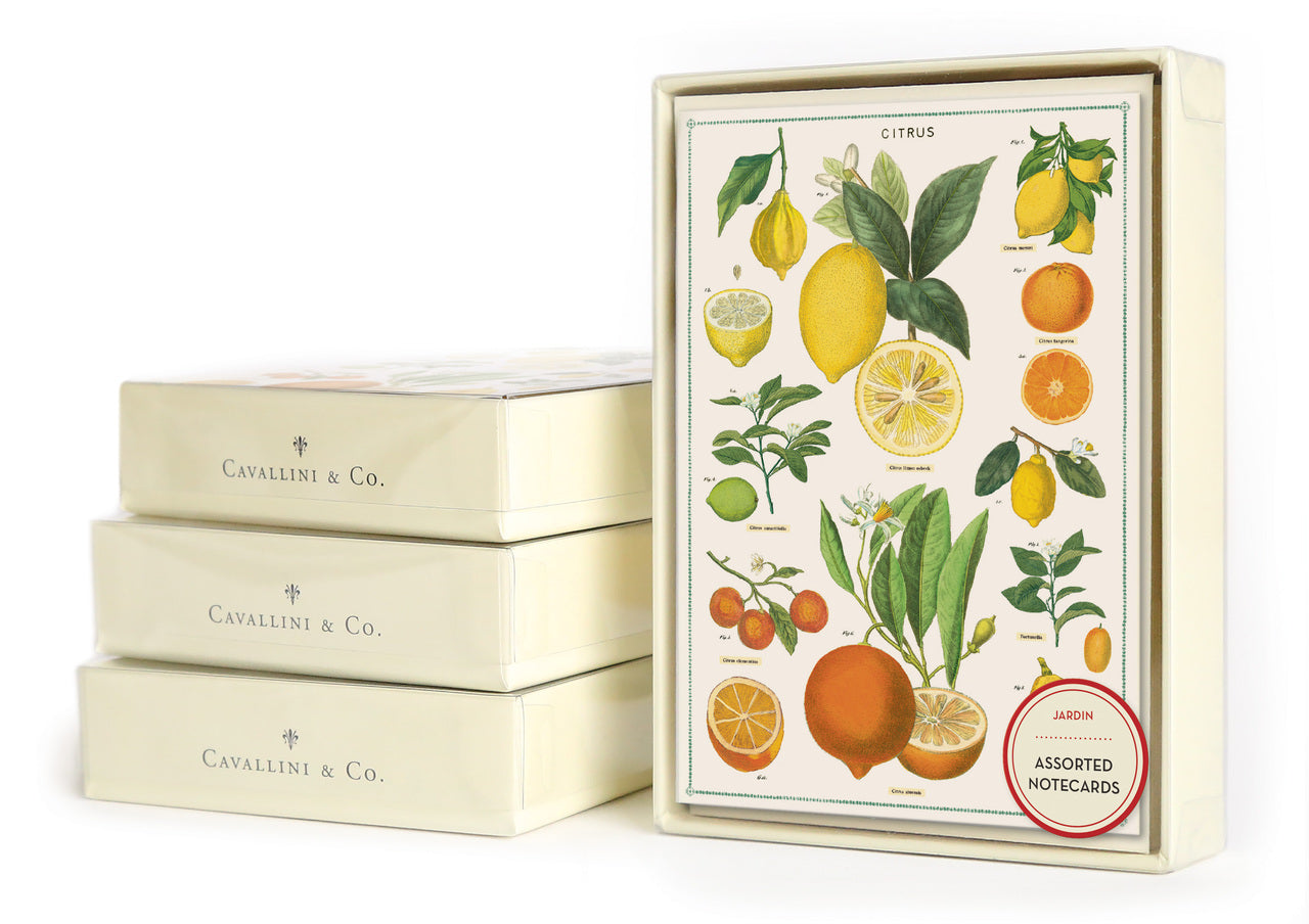 Cavallini & Co. Jardin boxed notecard set.