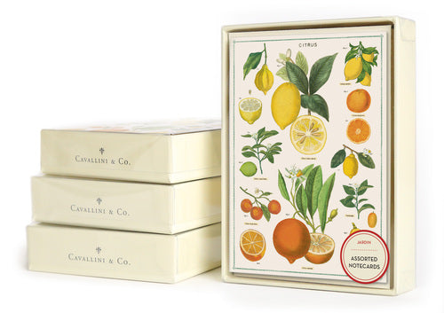 Cavallini & Co. Jardin Boxed Notecards
