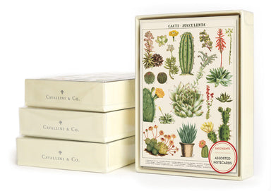 Cavallini & Co. Succulents Boxed Notecards