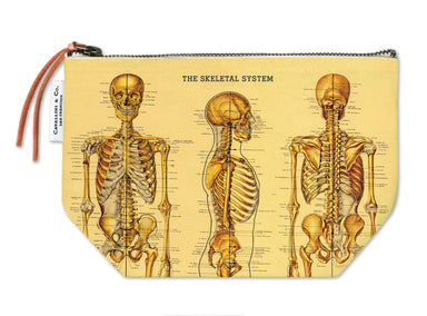 Cavallini & Co. Skeleton Vintage Pouch features vintage images from the Cavallini archives. 100% natural cotton bags are lined and have gusseted bottoms to stand on their own.