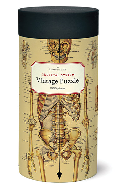 Cavallini's Skeleton puzzle features their Skeleton Decorative paper, a vintage chart of the human skeletal system, complete with scientific names of all bones!