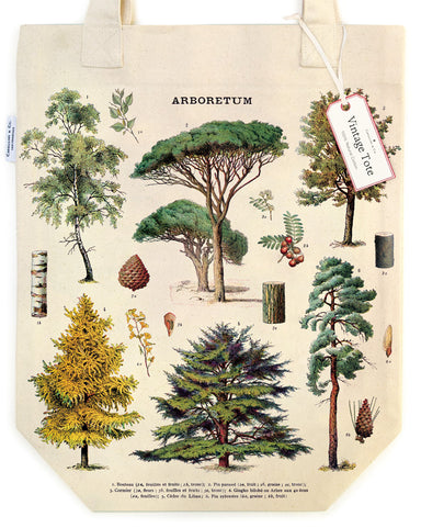 Arboretum Tote Bag features beautiful detailed vintage images of trees, their leaves, seeds, cones, and trunk details.