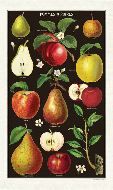 Apples and Pears tea towel has brightly colored fruits complimented by a rich, dark background.